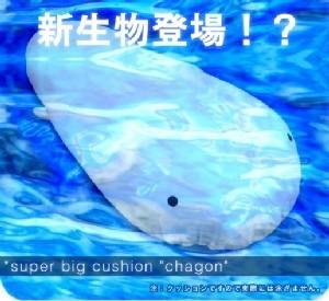Chagon01s