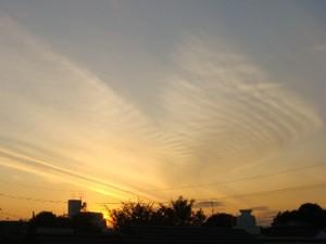 Sunset_081126_04