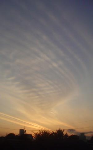 Sunset_081126_05